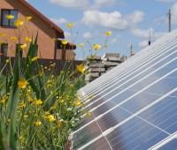Рада все же запретила установку домашних солнечных электростанций на земле