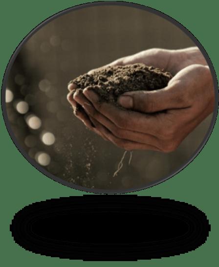 healthy_soil_pic1