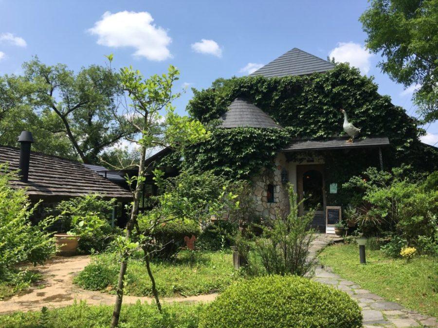 屋根の上のガチョウ|via:http://gendaikigyosha.co.jp/