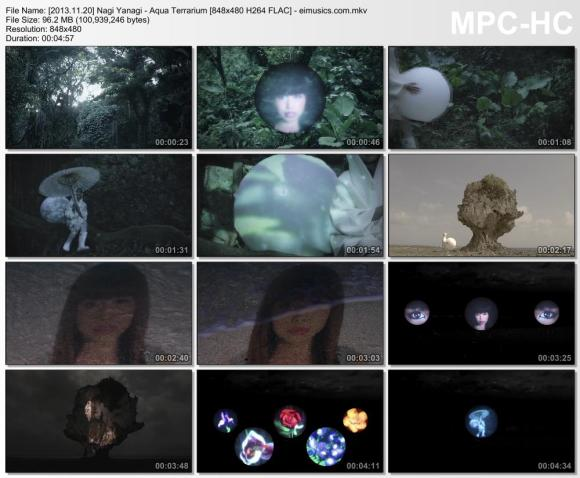 Download Nagi Yanagi - Aqua Terrarium [480p]   [PV]