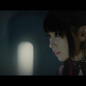Nana Mizuki × T.M.Revolution - Preserved Roses