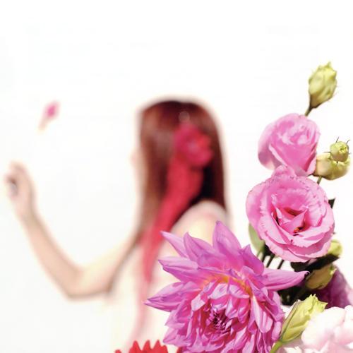 Download Akino Arai - Kin no Nami Sen no Nami [Single]