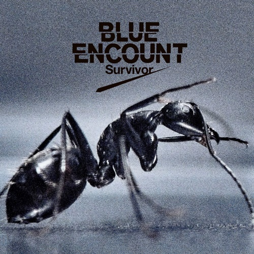 BLUE ENCOUNT - Survivor