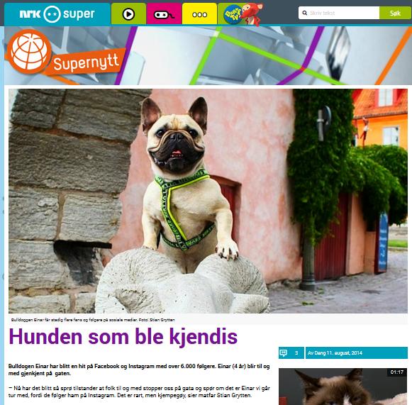 NRK SUPER: Hunden som ble kjendis