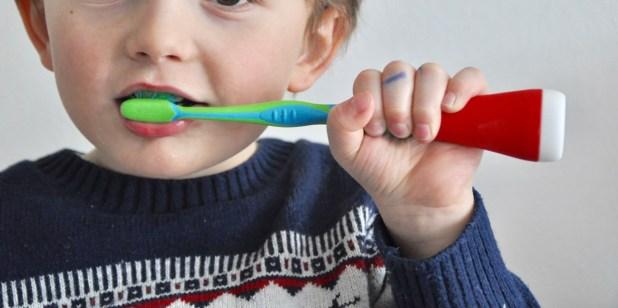 DSC_0756-1024x511 Vier Monate Zähneputzen mit Playbrush & Oster Goodie