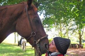 Erfuellen Sie sich einen Kindertraum und schliessen Sie Freundschaft mit Pferden.