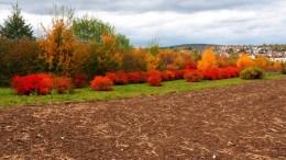 Herbst 07