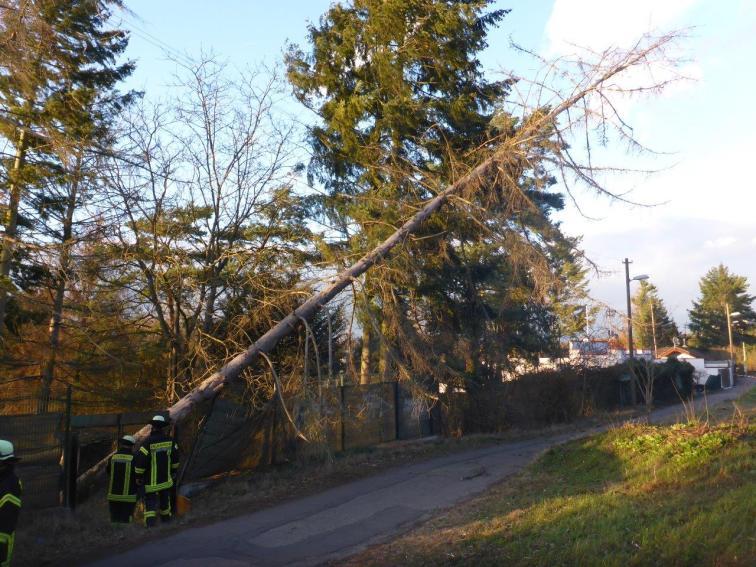 Fotos der Feuerwehr Mainz