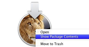 Lion - Show Package Contents