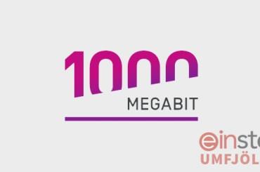 1000 Mbit tenging