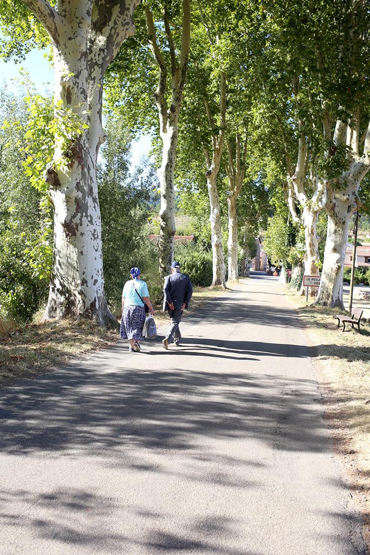 Languedoc, Weingebiet, Feinschmecker, Frankreich, Haute Cuisine