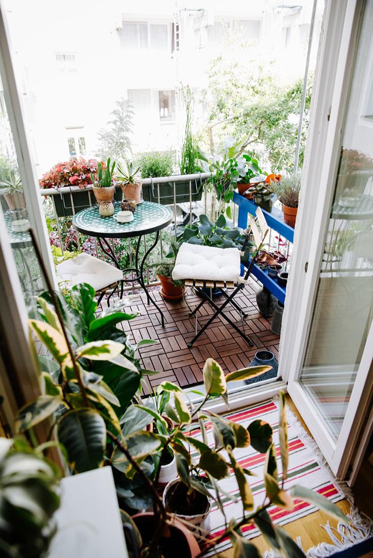 Blick auf den Dschungel-Balkon aus dem Buch »tiny balcony« von GU