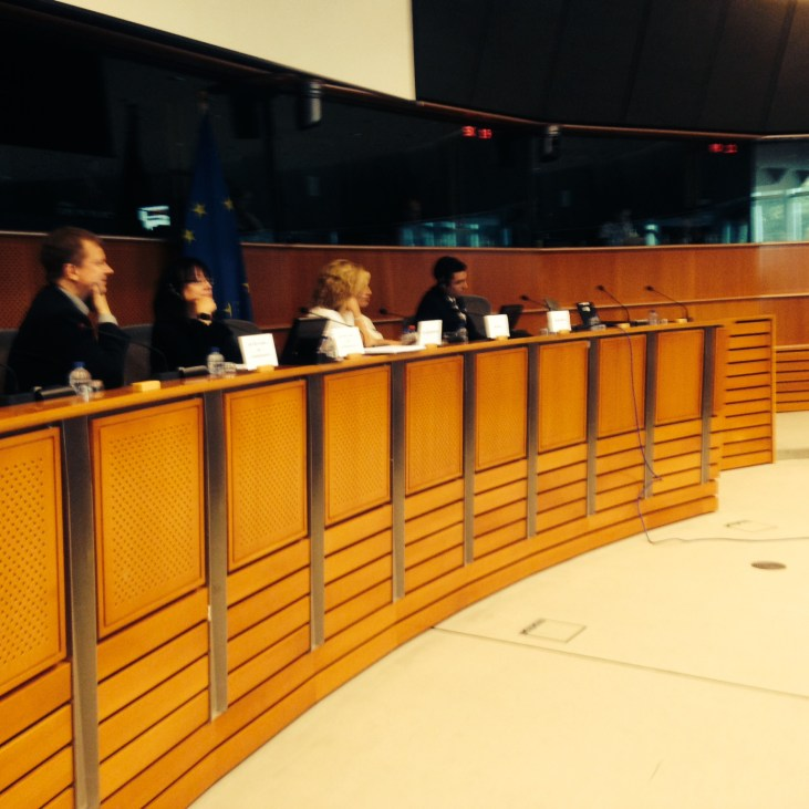 Hearing at the Human Rights Committee in the EP: Breaking the Silence and My Truth (Stand With Us)