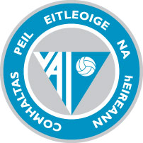 VolleyballLogo