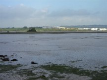 Low tide as we approach Cobh