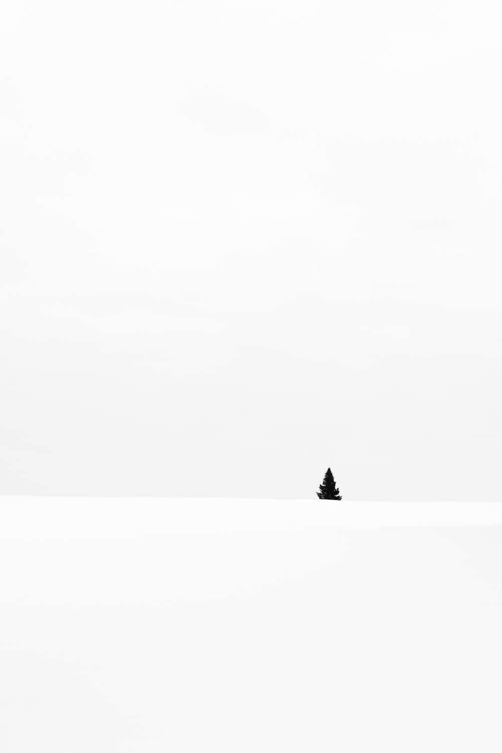 """Snowscapes"" - a photo by Eirik Jeistad"