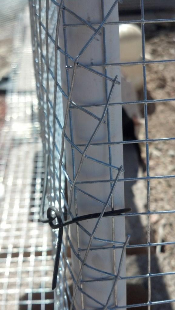corner of cage
