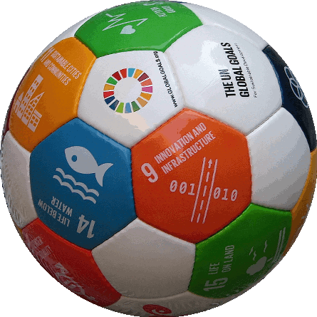 Soccer ball Eir Global Goals 2