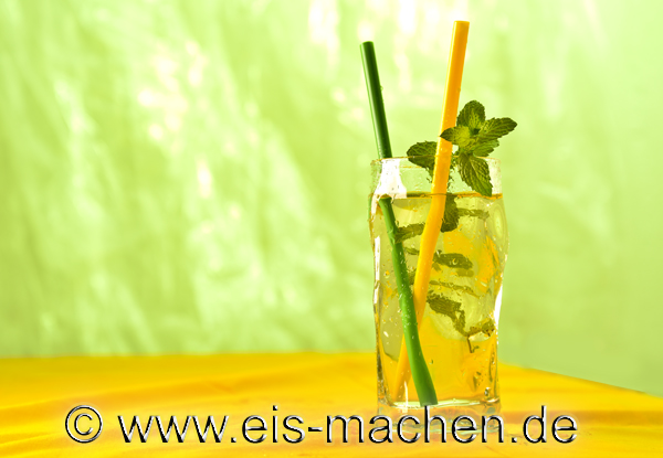 Eis_Blog_Zitronen-Minze_Sirup_Blog
