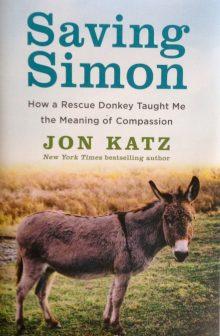 Book Club: Saving Simon