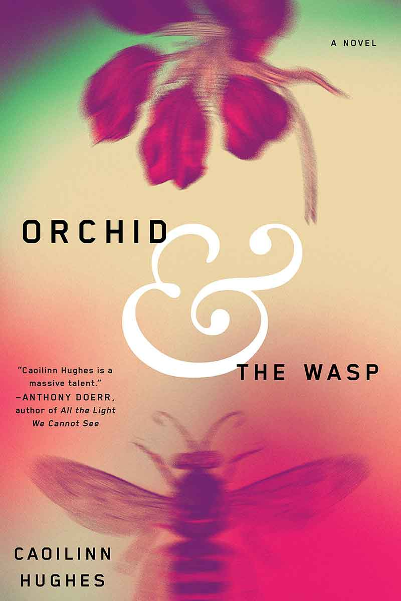 15-Orchid-and-the-Wasp