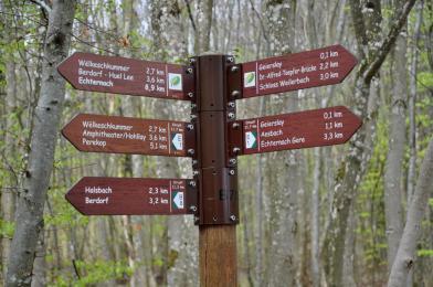 08-trailrunning-trier-22.04.17