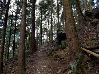 Extratour Mehringer Schweiz Rocite305 (6)