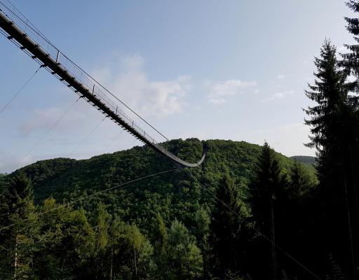 Hunsbuckel Trail – HuBuT – Premiere 2017