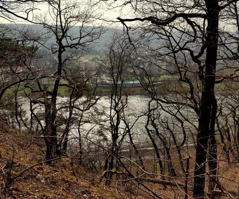 Auf Heimatpfaden – Traillaufen in Trier und Region.