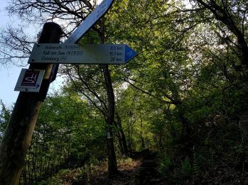 Morscheider Grenzpfad (5)