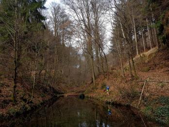 Revierguide Suedpfalz Tag 2 Inov8 Roclite305 (10)