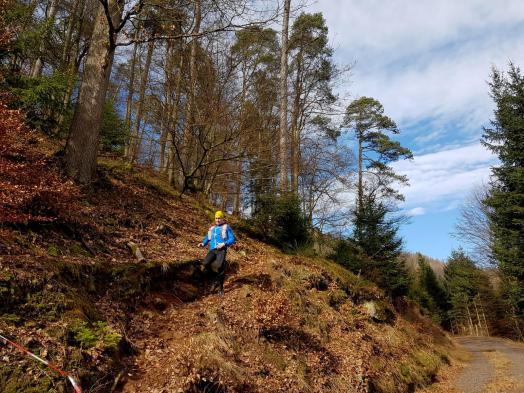 Revierguide Suedpfalz Tag 2 Inov8 Roclite305 (24)