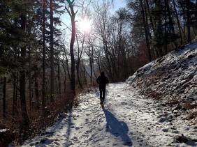 Rockenwalder Urwaldpfad (35)