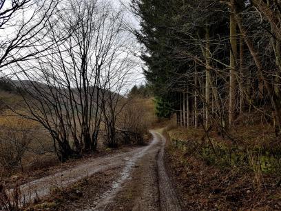 Saar-Riesling-Steig - Inov-8 Roclite 305 (17)