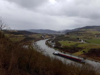 Saar-Riesling-Steig - Inov-8 Roclite 305 (46)