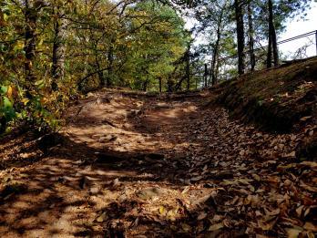 Trailrunning - Trier (11)