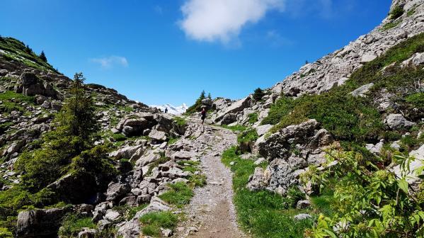 Trailrunning - Trier (3)