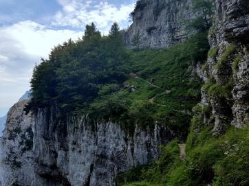 Trailrunning - Trier (32)