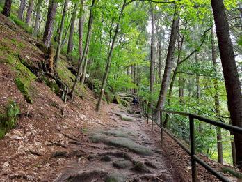 Trailrunning - Trier (5)