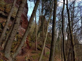 Trailrunning - Trier (7)