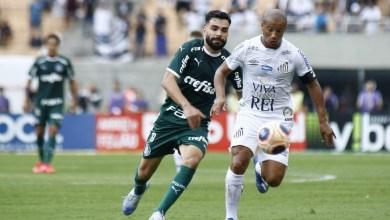 Palmeiras x Santos se enfrentam hoje em disputa pelo Brasileirão!