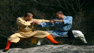 5 Estilos de Kung Fu famosos.