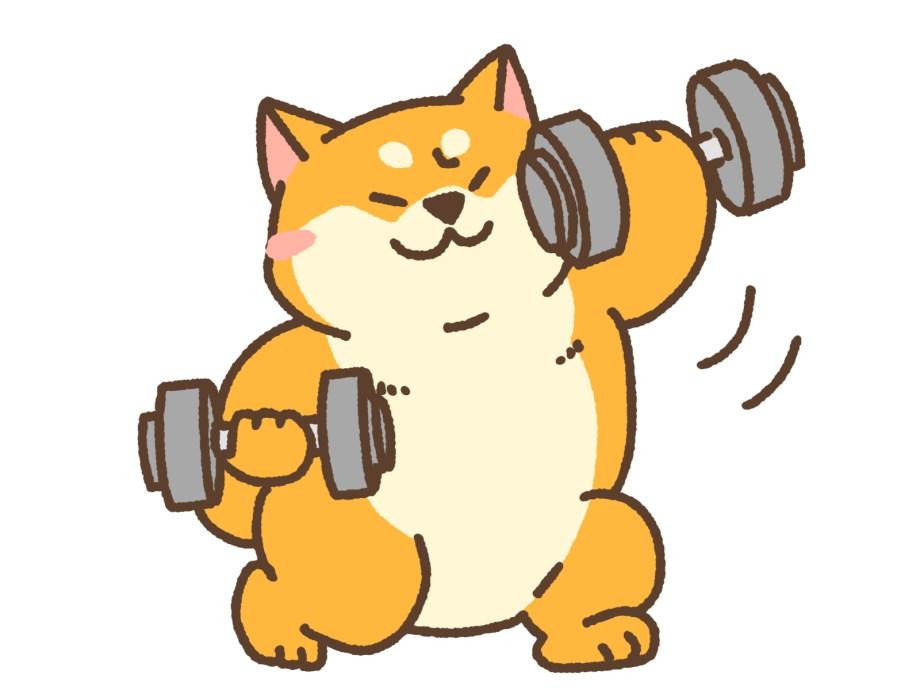 HIITなら低重量でも確実に筋肉に効かせることができる【短時間】