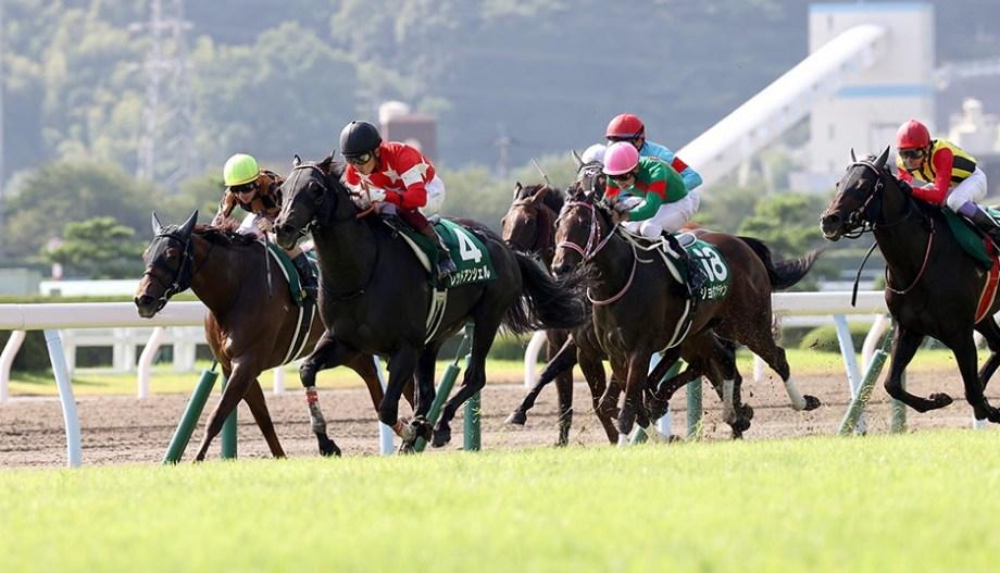 【競馬で副収入】北九州記念GⅢ【2021】