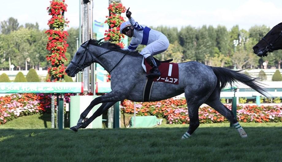 【競馬で副収入】札幌記念GⅡ【2021】