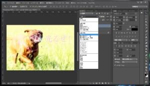 Photoshop-ボカし-描写