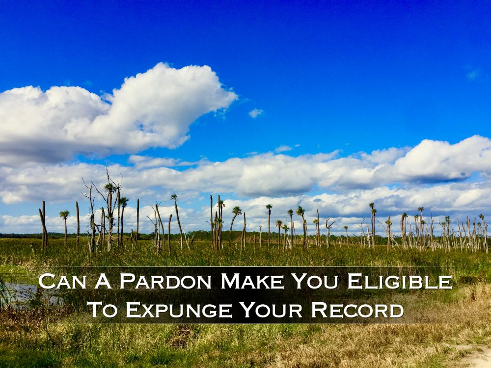 can a pardon make you eligible to expunge your record