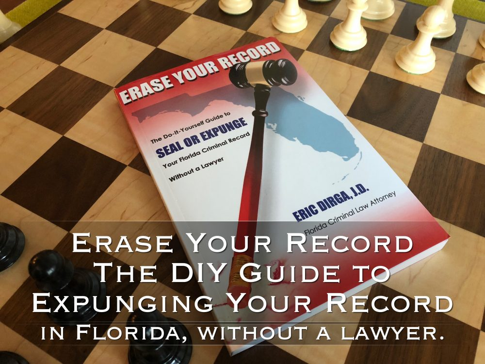 erase your record the diy guide to expunging your record in florida, without a lawyer