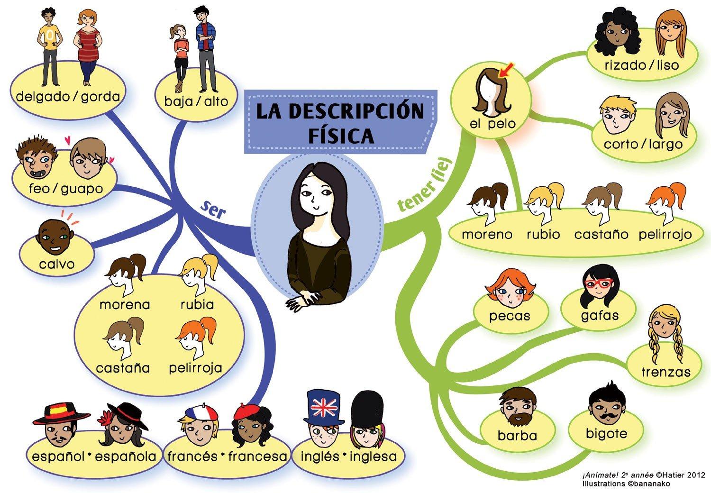 Ejemplos De Descripcion