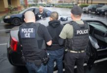 ICE tells foreign students on visas they must leave US or risk deportation if schools go online-only